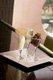 8119-restaurantfenz-7512.jpg.jpe