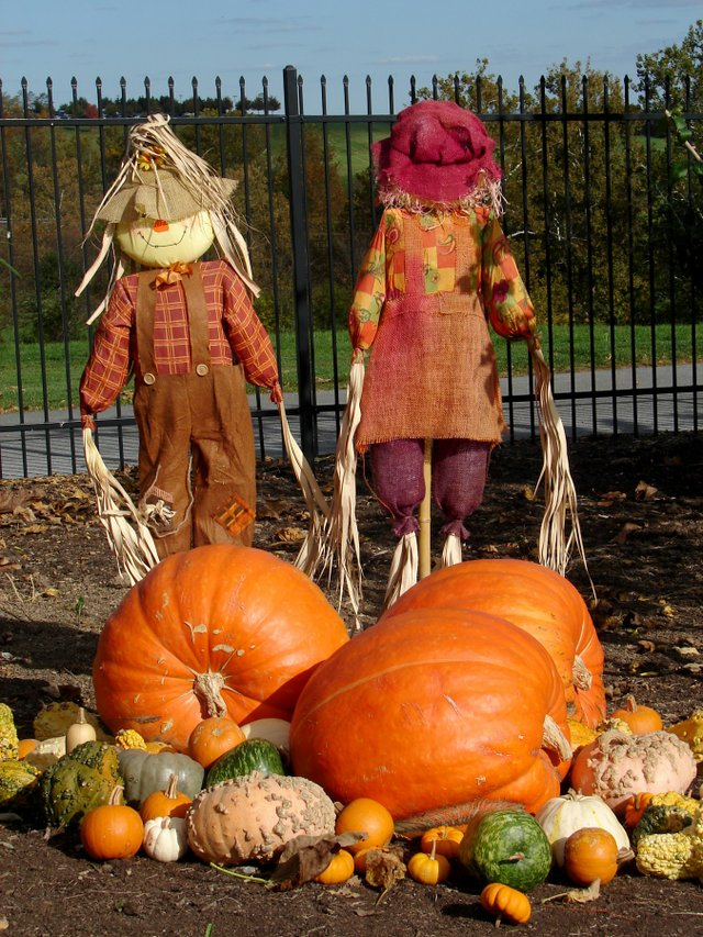 imagesevents9840scarecrow-jpg.jpe