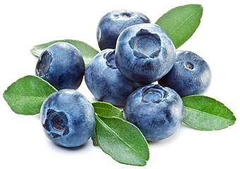 imagesevents11640blueberries_stack-png.png