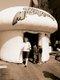 8135-restaurantmushroomfest097.jpg.jpe