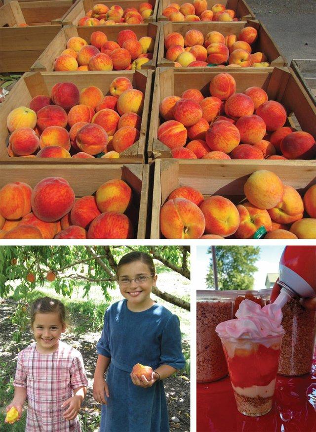 peachescollage.jpg