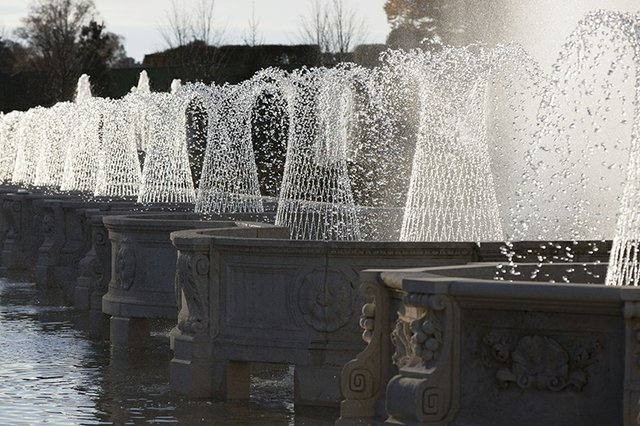 283602_Main Fountain Garden_Traub_ Daniel-web.jpg
