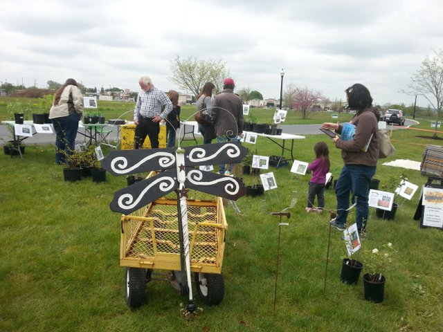 Lancaster Native Plant Festival.jpg