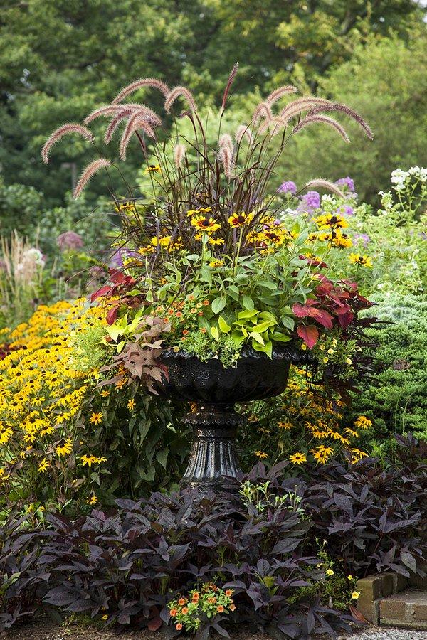 Cottage Garden (Helen Norman).jpg