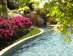 Garden oasis legacy 9.JPG