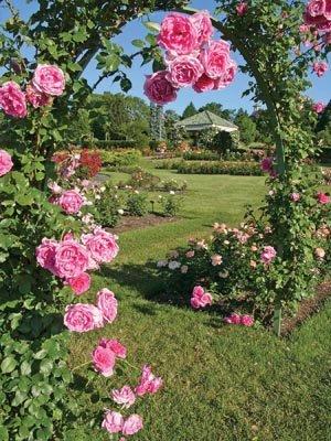 gardens02.jpg.jpe