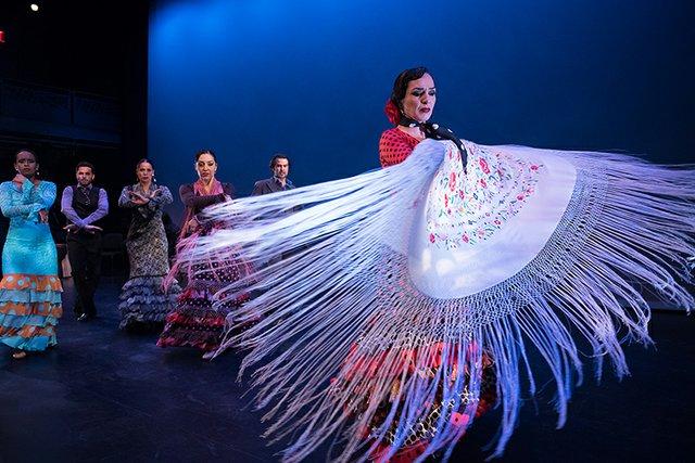 Flamenco_09.jpg