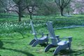 best chairs.JPG