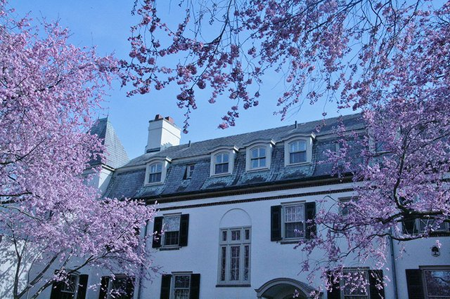 house with cherries.JPG