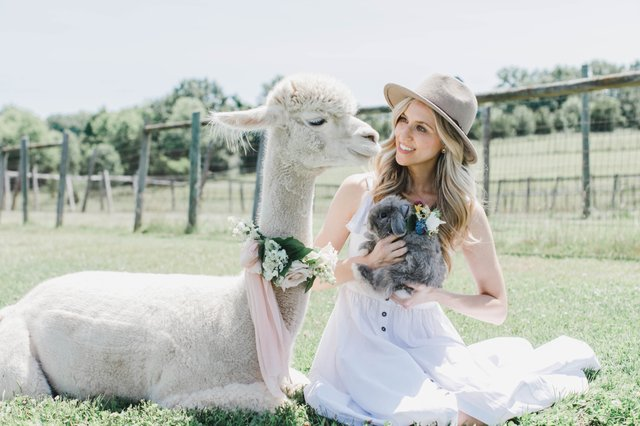 Alpaca and Bunny2.jpg