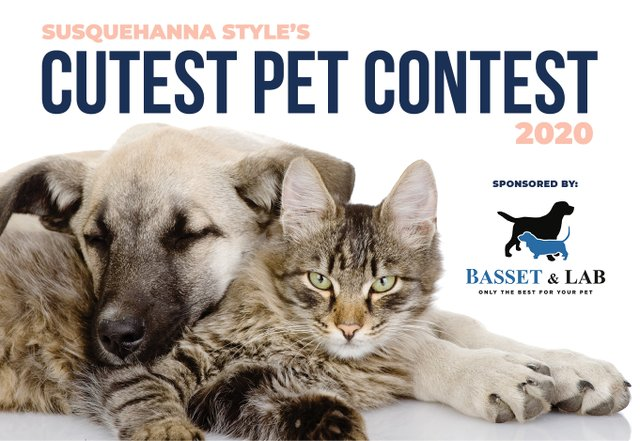 SQS_PetContest_2020_header.jpg