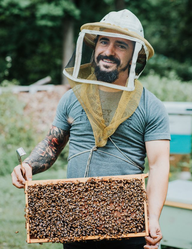 Bees-5.png