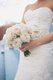 9656-JoeLindsey_Wedding_108-1752119845-O.jpg.jpe