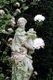 10127-flowergirl.jpg.jpe