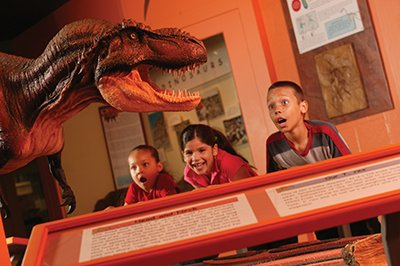 NorthMuseum_Dino_Hall_HiRes2013.jpg.jpe