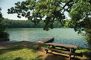 lake.jpg.jpe