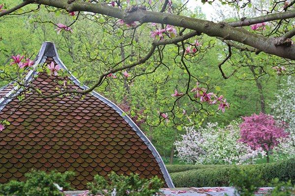 roof-view_edited-1.jpg.jpe