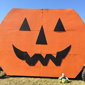 big-pumpkin.jpg.jpe