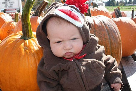 pumpkin-stink-eye.jpg.jpe