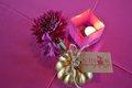 13789-CelebrateWomen-webgalleryDSC_0048.JPG.jpe