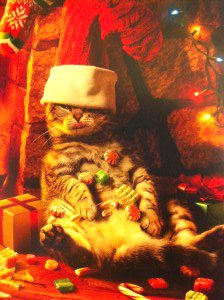 cat-card1-300x224.jpg.jpe