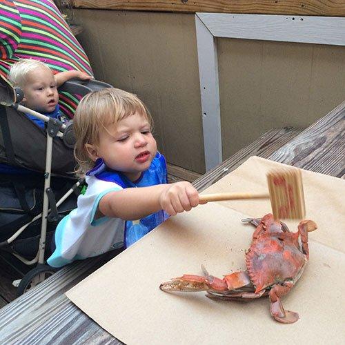 crab.jpg.jpe