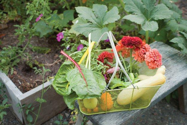 Garden-Edibile-Large.jpg.jpe