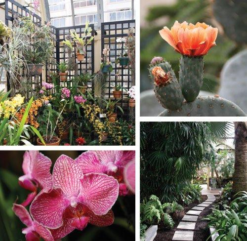 conservatory.jpg.jpe