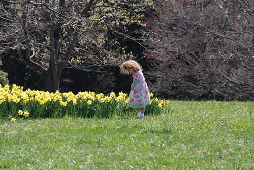 girl-and-doll-with-daffs.jpg.jpe